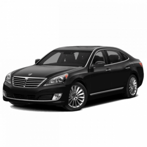 Выкуп ненужных запчастей Hyundai Hyundai Equus