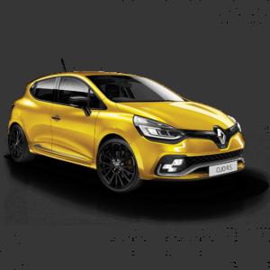Выкуп ненужных запчастей Renault Renault Clio RS